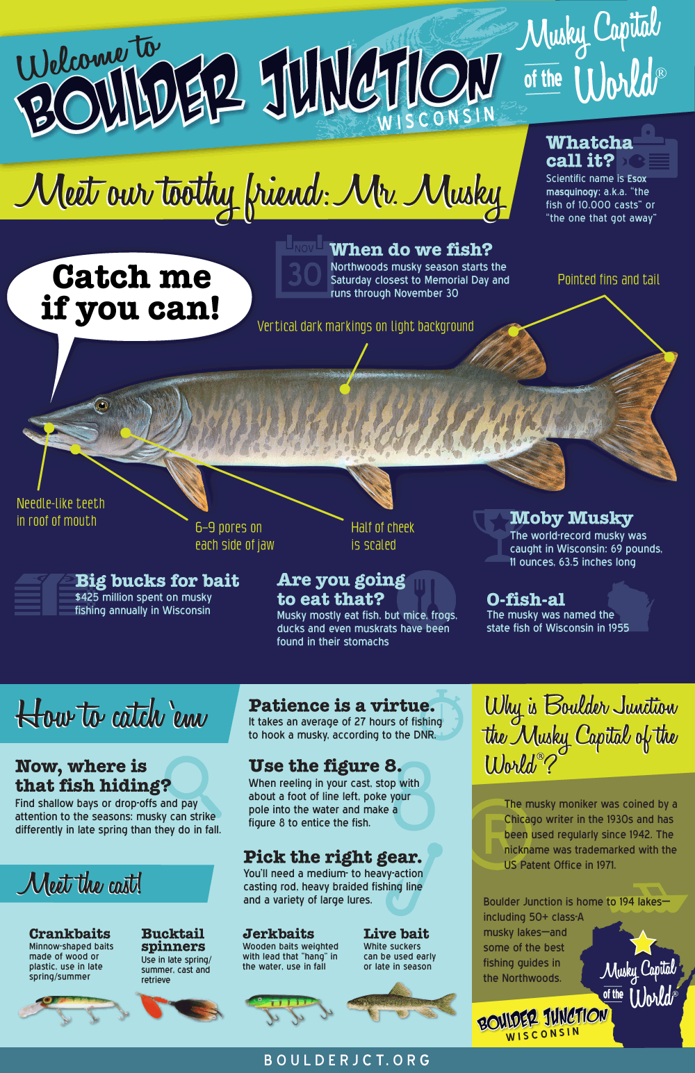 What is a Musky Infographic